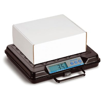 Electronic Floor & Bench Scales by Step and Store